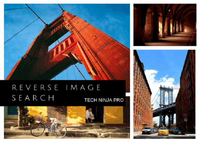 Reverse Image Tools Compared!