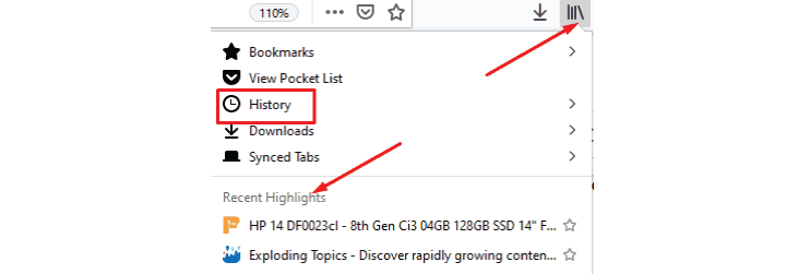 Closed tabs from the browser history